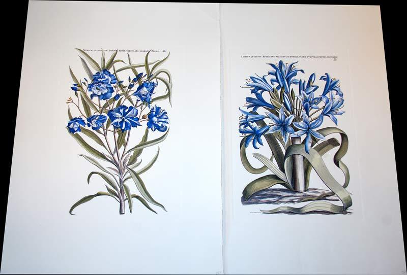 unframed-floral-artwork