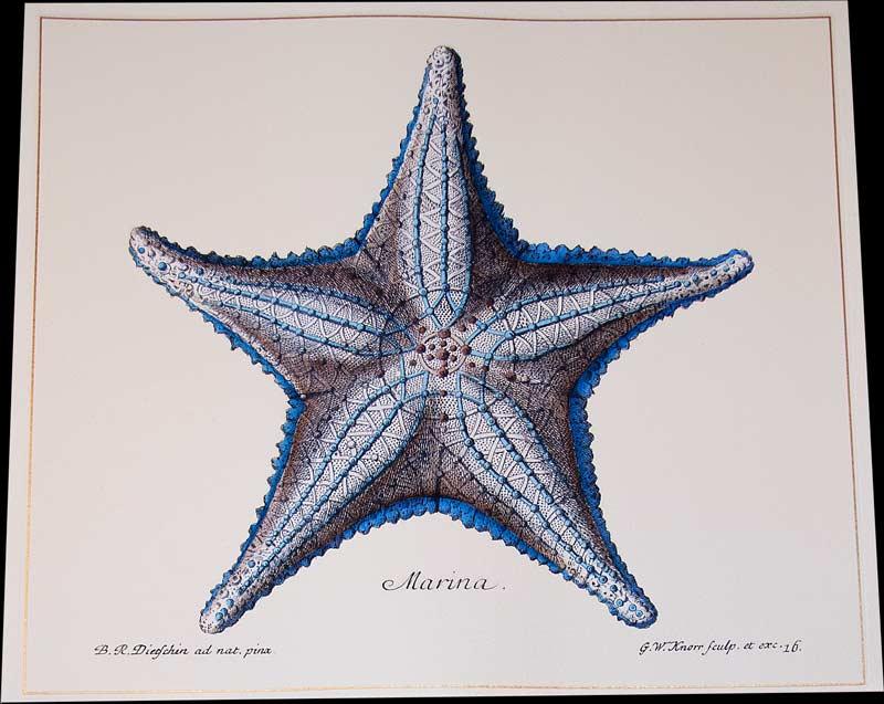 unframed-nautical-artwork